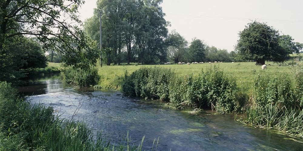Development Site Acquired in Stanton, Wiltshire